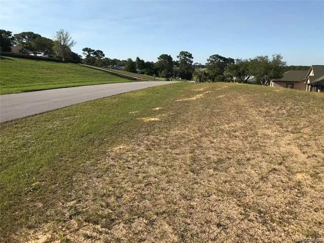 1085 N Spend A Buck Drive, Hernando, FL 34442 (MLS #791956) :: Plantation Realty Inc.