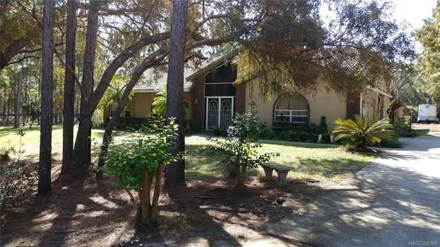 3230 N Stirrup Drive, Beverly Hills, FL 34465 (MLS #791960) :: Plantation Realty Inc.