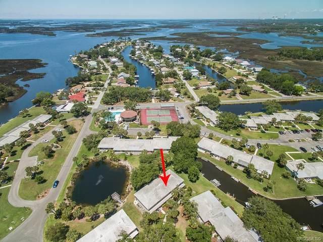 1286 N Seagull Point, Crystal River, FL 34429 (MLS #791993) :: Plantation Realty Inc.