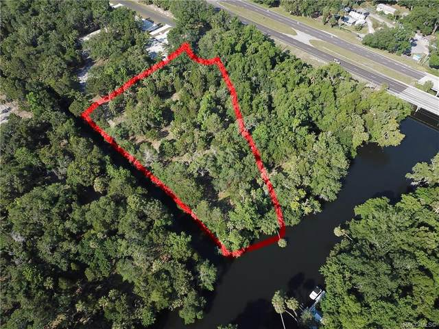 11187 N Withla Bluff Point, Inglis, FL 34449 (MLS #791994) :: Plantation Realty Inc.