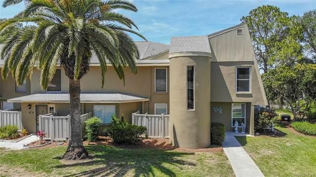 11517 W Sandpiper Court, Crystal River, FL 34429 (MLS #792037) :: Plantation Realty Inc.