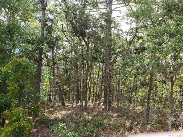 870 E Hobart Lane, Hernando, FL 34442 (MLS #792110) :: Plantation Realty Inc.