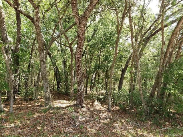 871 E Hobart Lane, Hernando, FL 34442 (MLS #792111) :: Plantation Realty Inc.