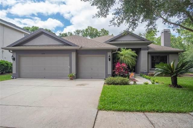 6156 Native Woods Drive, Tampa, FL 33625 (MLS #792126) :: Pristine Properties
