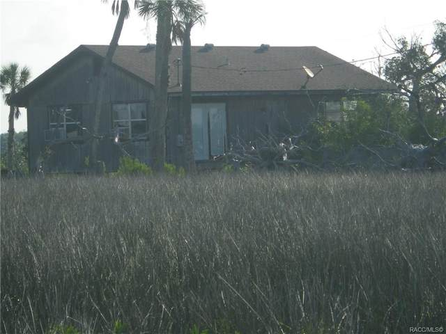 12940 Light Pole Island, Homosassa, FL 34448 (MLS #792127) :: Plantation Realty Inc.