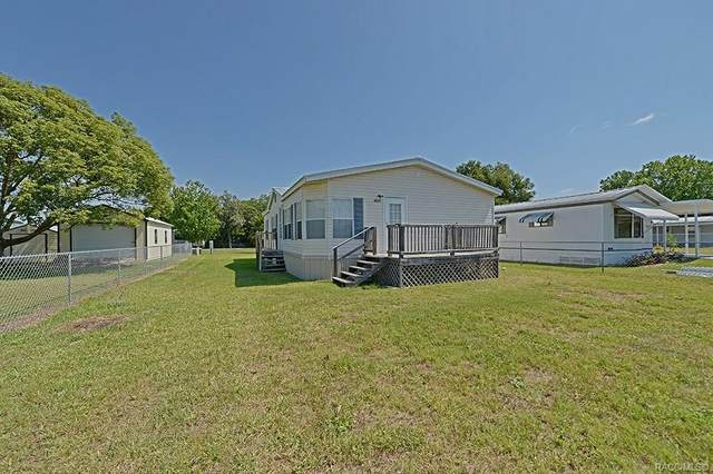 4231 E Alabama Lane, Hernando, FL 34442 (MLS #792149) :: Plantation Realty Inc.