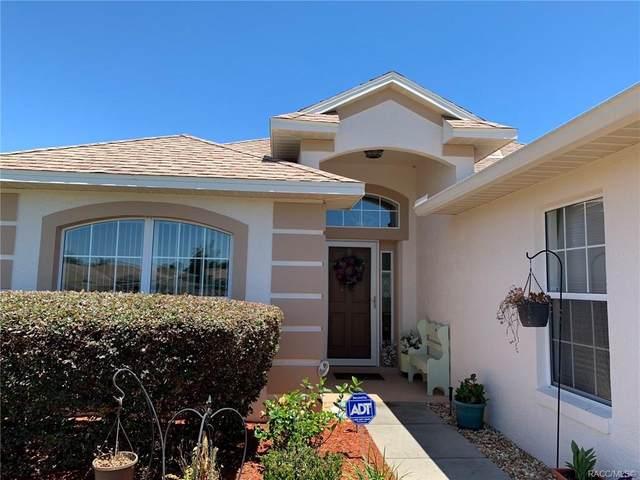 3793 E Kiwi Cove Court, Hernando, FL 34442 (MLS #792162) :: Plantation Realty Inc.