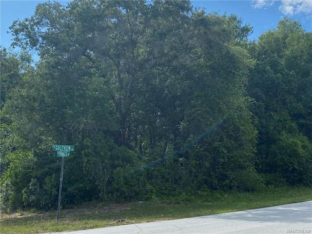 8336 N Golfview Drive, Citrus Springs, FL 34434 (MLS #792200) :: Plantation Realty Inc.