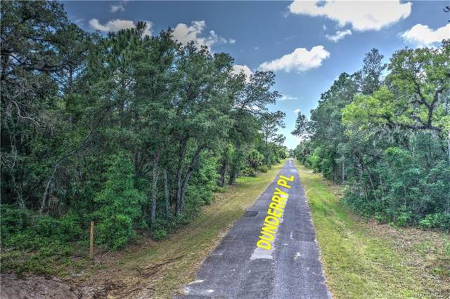 10614 W Dunderry Place, Crystal River, FL 34428 (MLS #792211) :: Plantation Realty Inc.