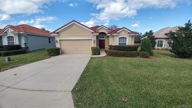 1279 W Skyview Crossing Drive, Hernando, FL 34442 (MLS #792230) :: Plantation Realty Inc.