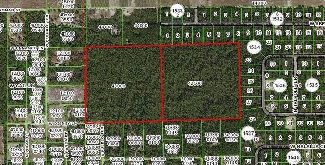 0 W Disney Lane, Dunnellon, FL 34433 (MLS #792257) :: Plantation Realty Inc.