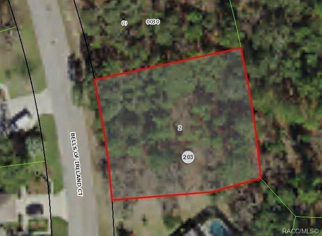 34 Bells Of Ireland Court, Homosassa, FL 34446 (MLS #792290) :: Plantation Realty Inc.