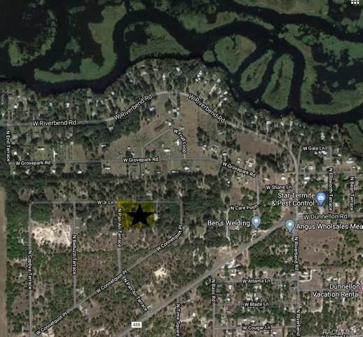 11919 N Pan An Terrace, Dunnellon, FL 34434 (MLS #792297) :: Plantation Realty Inc.