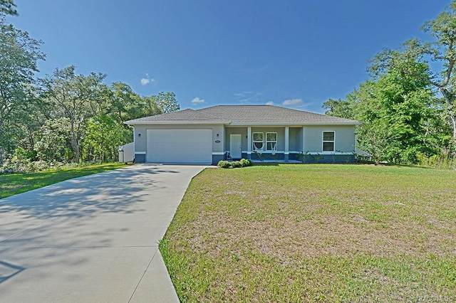 1313 W Mcneal Drive, Citrus Springs, FL 34434 (MLS #792323) :: Plantation Realty Inc.