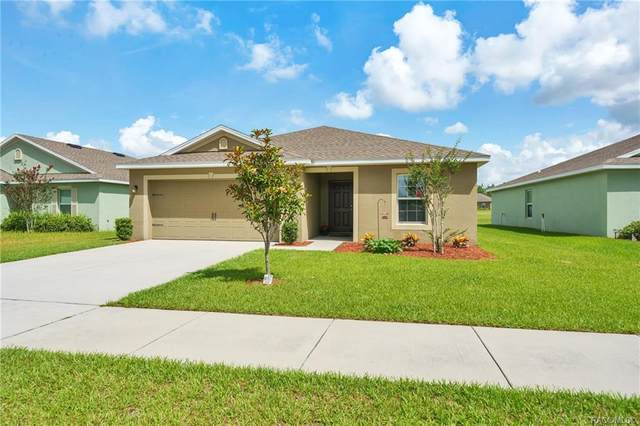 30931 Water Lily Drive, Brooksville, FL 34602 (MLS #792354) :: Plantation Realty Inc.