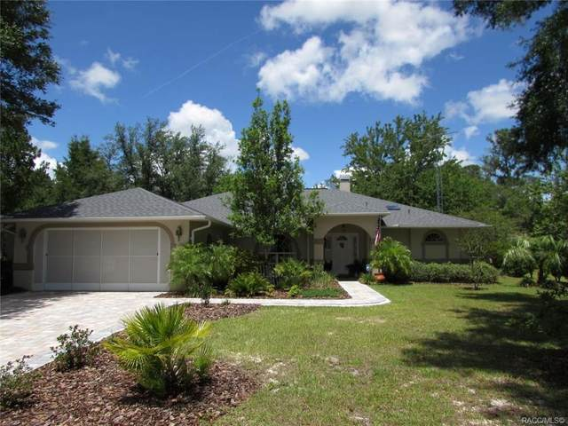 20071 Wood Duck Drive, Dunnellon, FL 34432 (MLS #792360) :: Plantation Realty Inc.