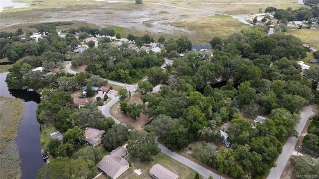 9042 E Tsala Apopka Drive, Inverness, FL 34450 (MLS #792396) :: Plantation Realty Inc.