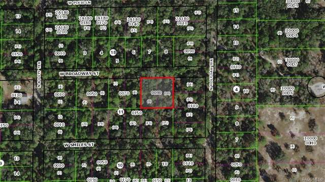 7092 W Broadway Street, Dunnellon, FL 34433 (MLS #792406) :: Plantation Realty Inc.