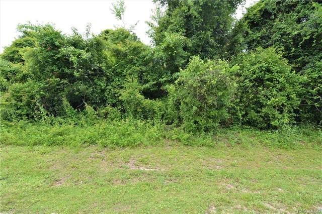 2817 N Hythe Point, Hernando, FL 34442 (MLS #792429) :: Plantation Realty Inc.