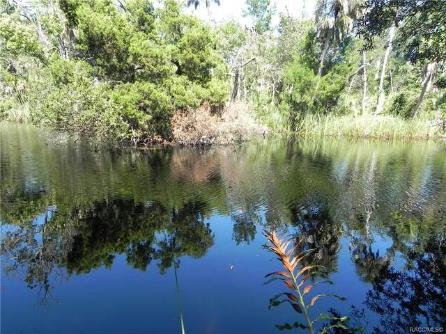 11265 W Spring Park Court, Homosassa, FL 34448 (MLS #792535) :: Plantation Realty Inc.
