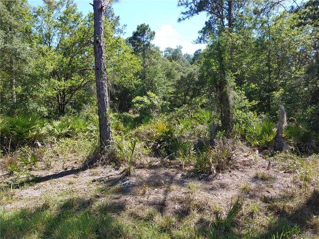 11696 W Flaxen Drive, Crystal River, FL 34428 (MLS #792695) :: Pristine Properties