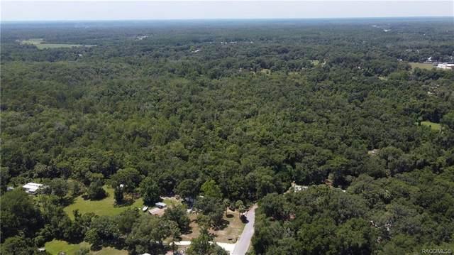 1751 S Palm Avenue, Homosassa, FL 34448 (MLS #792751) :: Plantation Realty Inc.