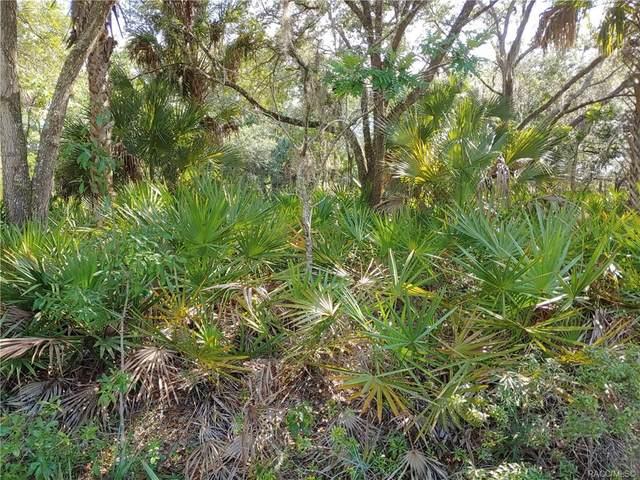 8036 N Flame Vine Way, Crystal River, FL 34428 (MLS #792762) :: Pristine Properties