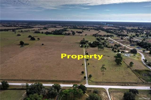 8427 S Pleasant Grove Road, Inverness, FL 34452 (MLS #792810) :: Plantation Realty Inc.