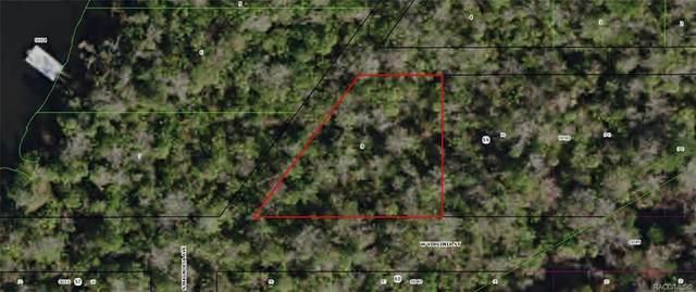 10725 W Virginia Street, Homosassa, FL 34448 (MLS #792852) :: Plantation Realty Inc.