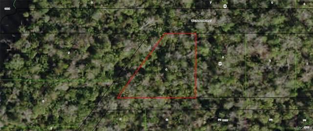 10690 W Caladonia Street, Homosassa, FL 34448 (MLS #792853) :: Plantation Realty Inc.