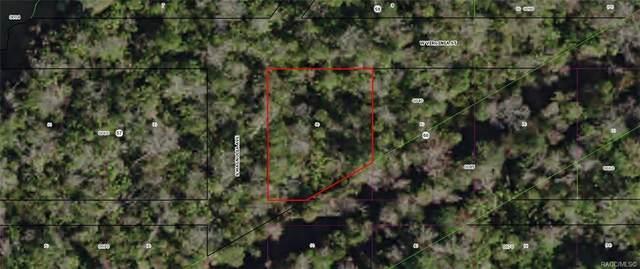 10632 W Virginia Street, Homosassa, FL 34448 (MLS #792855) :: Plantation Realty Inc.