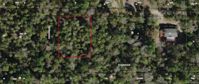 10734 W Marker Path, Homosassa, FL 34448 (MLS #792857) :: Plantation Realty Inc.
