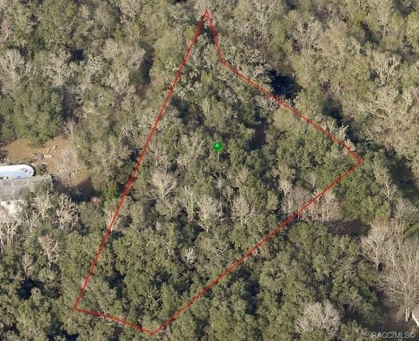 8220 S Kimberly Circle, Floral City, FL 34436 (MLS #792889) :: Plantation Realty Inc.