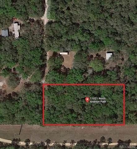 11021 N Andrion Path, Inglis, FL 34449 (MLS #792921) :: Plantation Realty Inc.