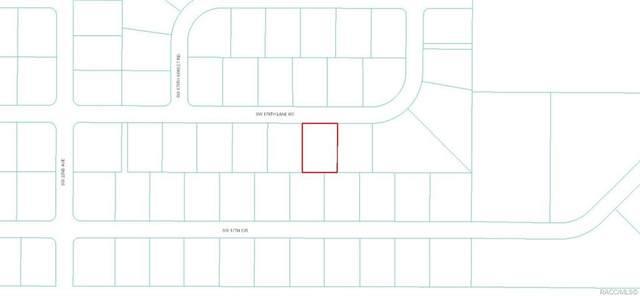 000 SW 178th Lane Road, Other, FL 34473 (MLS #792948) :: Plantation Realty Inc.