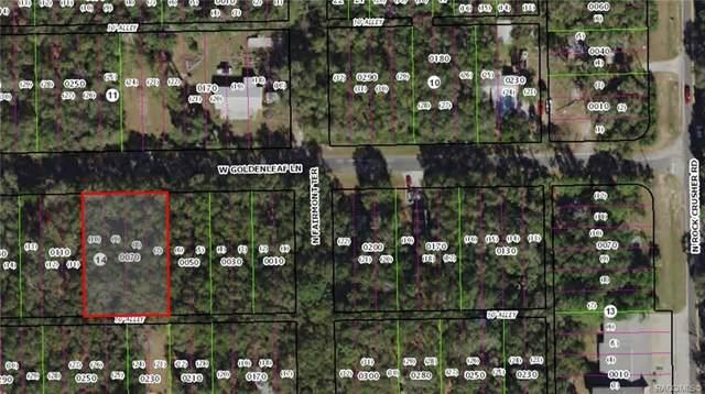 6380 W Goldenleaf Lane, Crystal River, FL 34429 (MLS #792988) :: Plantation Realty Inc.