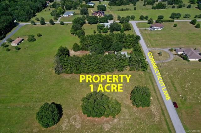 817 E Connecticut Lane, Hernando, FL 34442 (MLS #793005) :: Plantation Realty Inc.