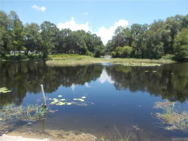 5061,5065 Emerald Drive, Hernando, FL 34442 (MLS #793023) :: Pristine Properties