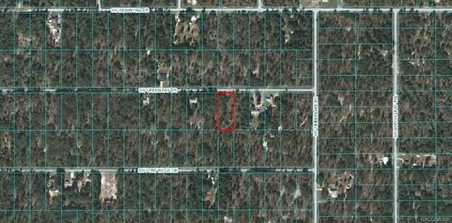 Lot 6 SW Green Bay Drive, Dunnellon, FL 34431 (MLS #793062) :: Plantation Realty Inc.