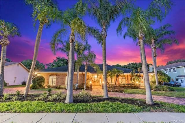 1024 Royal Birkdale Drive, Tarpon Springs, FL 34688 (MLS #793066) :: Pristine Properties