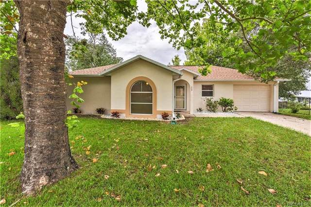 3440 SW 150th Lane Road, Ocala, FL 34473 (MLS #793069) :: Plantation Realty Inc.