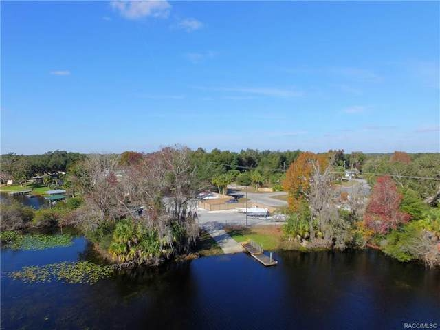 9664 E White Egret Path, Inverness, FL 34450 (MLS #793102) :: Plantation Realty Inc.