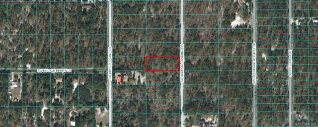 Lot 11 SW Admiral Landing Drive, Dunnellon, FL 34431 (MLS #793133) :: Plantation Realty Inc.