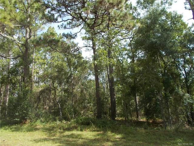 1829 W Stafford Street, Hernando, FL 34442 (MLS #793145) :: Plantation Realty Inc.