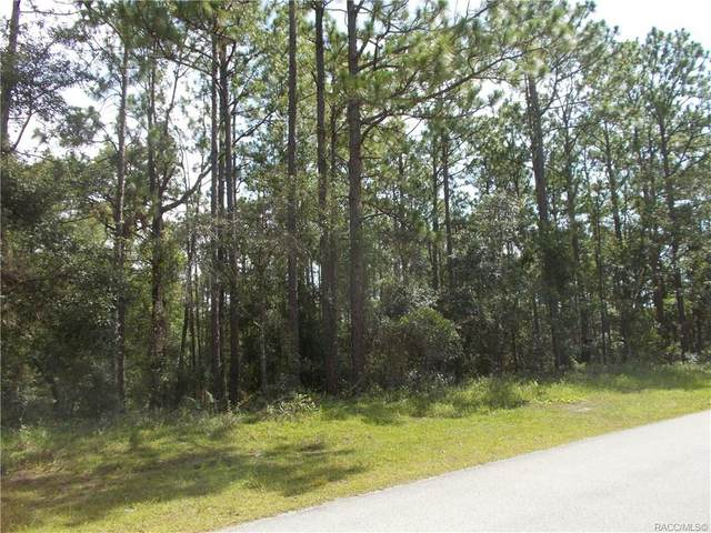 1853 W Stafford Street, Hernando, FL 34442 (MLS #793146) :: Plantation Realty Inc.