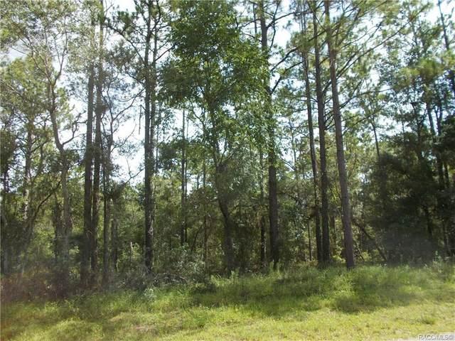 1889 W Stafford Street, Hernando, FL 34442 (MLS #793147) :: Plantation Realty Inc.