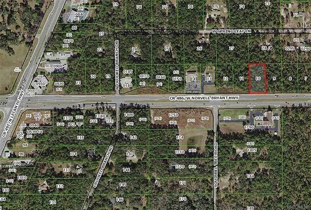 2553 W Norvell Bryant Highway, Lecanto, FL 34461 (MLS #793150) :: Plantation Realty Inc.