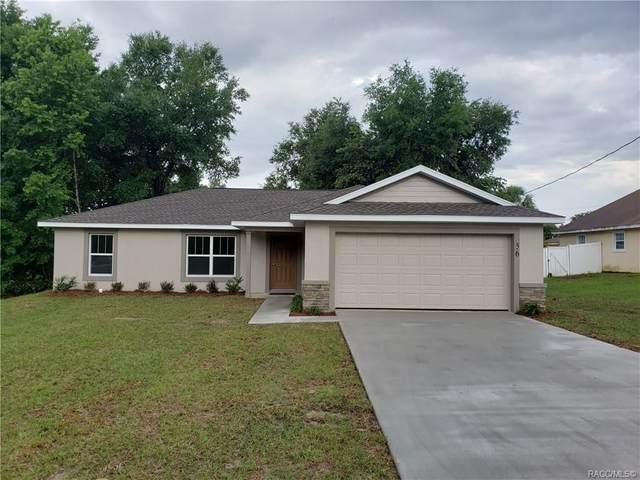 9748 N Wayland Avenue, Citrus Springs, FL 34434 (MLS #793175) :: Pristine Properties