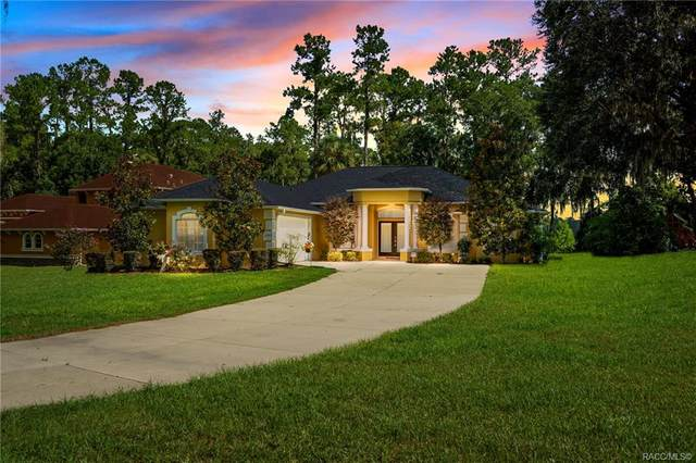11772 N Bluff Cove Path, Dunnellon, FL 34434 (MLS #793186) :: Plantation Realty Inc.
