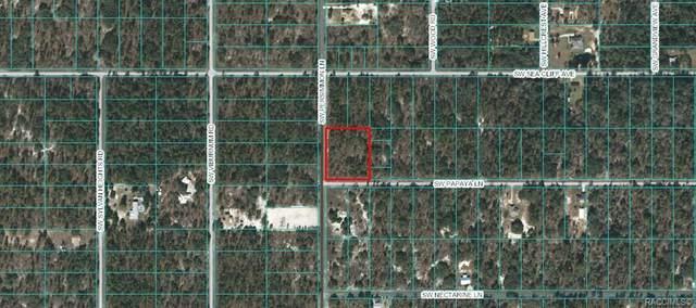Lot 25 & 26 SW Papaya Lane, Dunnellon, FL 34431 (MLS #793189) :: Plantation Realty Inc.